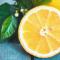 Как вырастить лимонное дерево дома: пошаговая инструкция